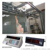焦作市軌道電子秤肉聯廠專用焦作屠宰電子秤
