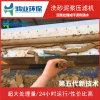 鹅卵石泥浆压榨设备 河卵石泥浆脱水机 破碎石子泥浆脱水机型号