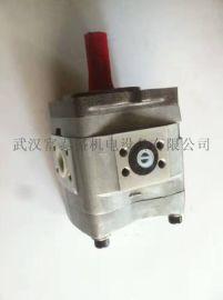 批发QT43 /53/63高压泵双联