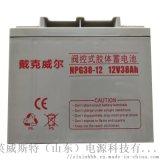 EPS/UPS蓄电池 长寿命蓄电池 38Ah免维护