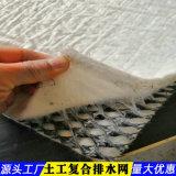 三維複合土工排水網-新疆產品特色