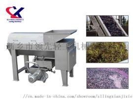 新乡**机械LX葡萄除梗破碎机30吨/小时