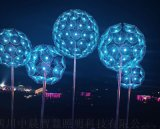 四川中晨 公園景觀燈 LED燈光佈置