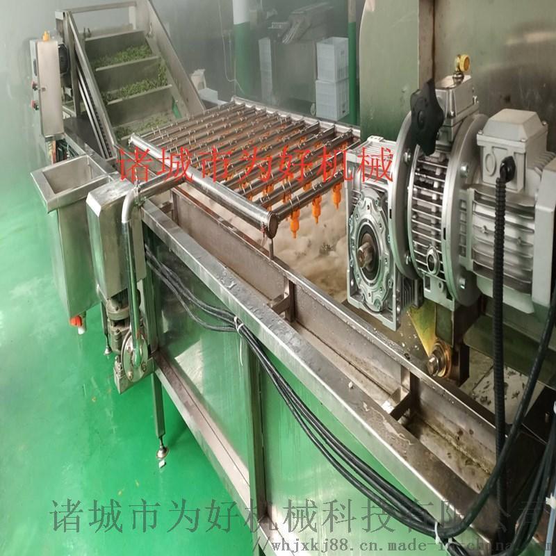 贵州花椒杀青线  蔬菜清洗机 杀青流水线设备