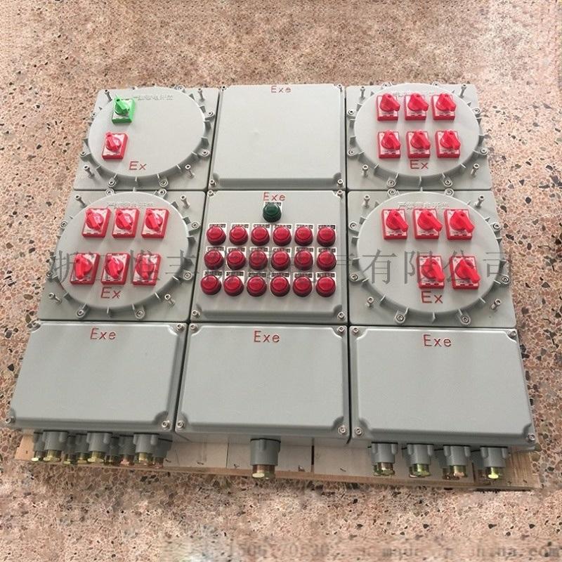 非标不锈钢BXM防爆照明动力配电箱