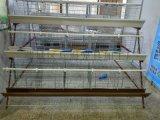 H型层叠式输送带自动蛋鸡笼占地面积小养殖密度大