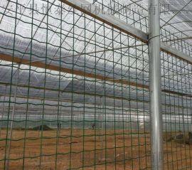 浸塑护栏网公路隔离栅电焊网荷兰网机器设备