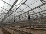 濱州透明中空陽光板頂棚應用