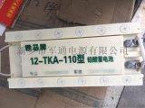 裝甲車蓄電池12-TKA-110