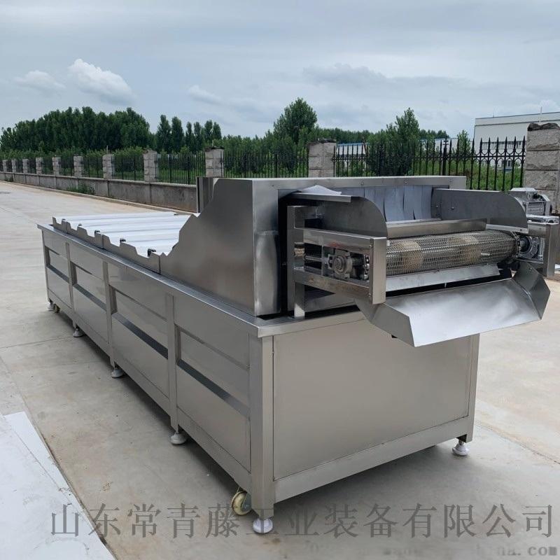 全自动蔬菜蒸煮漂烫机 酱菜食品巴氏杀菌机