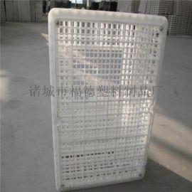 加大成鸡运输笼 种鸡运输笼子 组装式塑料鸡鸭周转箱