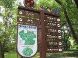 指示牌导视牌小区道路景区公园广告标识牌户外指路牌