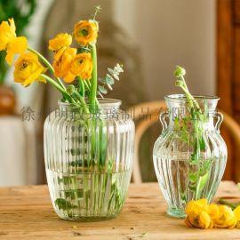 美式花瓶水培瓶玻璃花瓶客厅花瓶干花瓶鲜花瓶