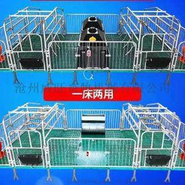 养殖场母猪产床 产保一体产床可加工定制 威旺