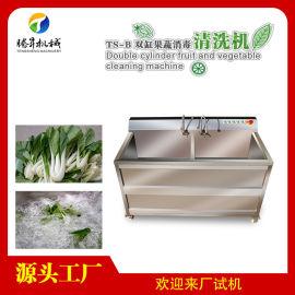 不锈钢气泡双缸果蔬清洗设备 火龙果清洗机
