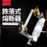 10KV跌落式熔斷器RW12-12/100A令克開關高壓熔斷器RW12-12/200A