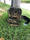 野生动物监测相机_红外触发相机_野生动物监测仪