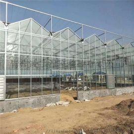 冬季保温玻璃温室工程玻璃大棚建设项目