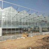 冬季保溫玻璃溫室工程玻璃大棚建設項目