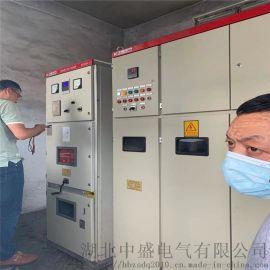 笼型电机液体电阻启动柜 10KV水阻柜选那家