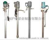 供應不鏽鋼防爆電動油桶泵YBYB