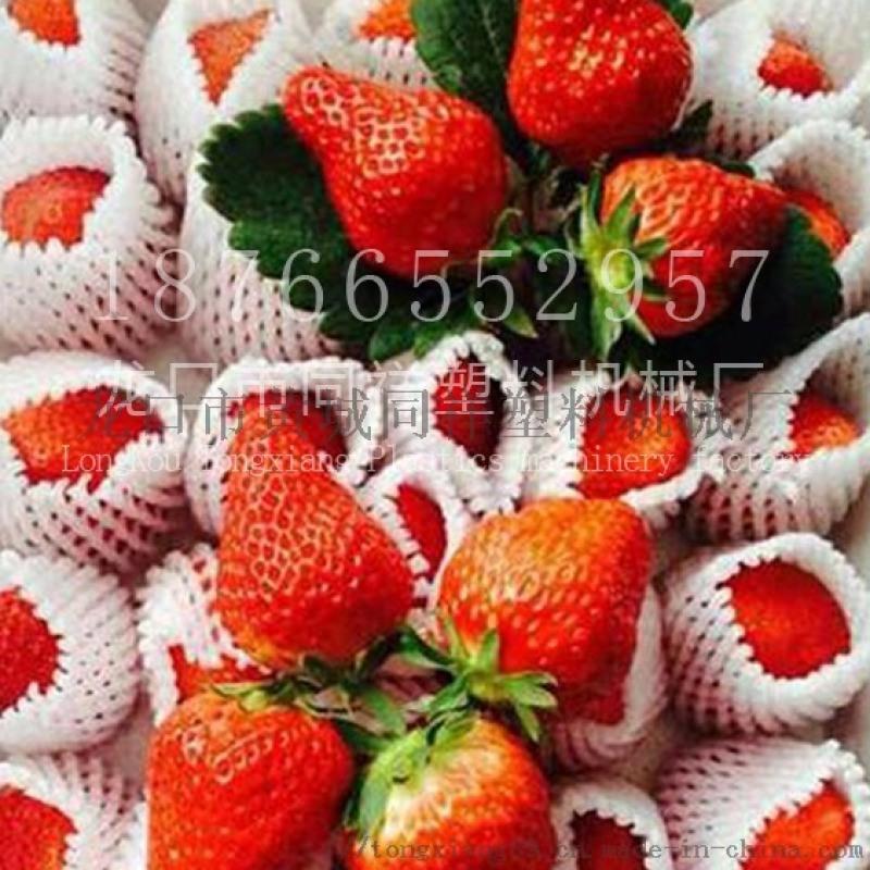 香梨网套机桃子草莓网袋挤出机设备