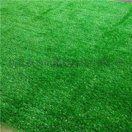 河北永恒幼儿园人造草坪