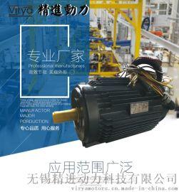 Virya精进品牌造雪机、抑尘风机  驱动电动机