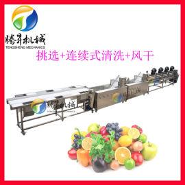 气泡喷淋菠菜清洗机 腾昇菠菜清洗净菜生产线