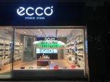 上海,江浙沪 ECCO橱窗设计方案