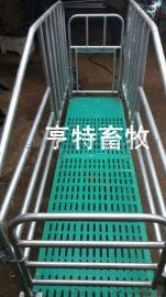 江苏养猪设备复合定位栏 猪用限位栏带复合漏粪板价格