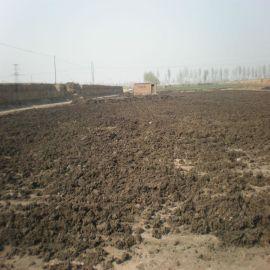 山东潍坊鸡粪价格|干鸡粪厂家|农得利有机肥