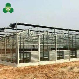 鑫泽 XZ-WS-B0091 玻璃温室的价格 智能玻璃温室 智能温室大棚 玻璃温室厂家