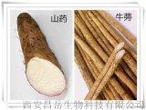 山药提取物 薯蓣皂素 昌岳包邮