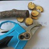 新款21v高品质电动果树剪刀 园林修剪机