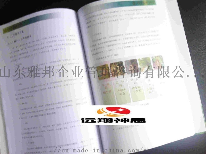 雅邦公司代写立项报告计划书代写价格