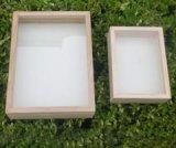 生活史標本盒