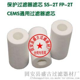 CEMS 通用过滤器 保护过滤器滤芯30×15×70
