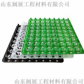 张家口阔展厂家**蓄排水板/加强型排水板