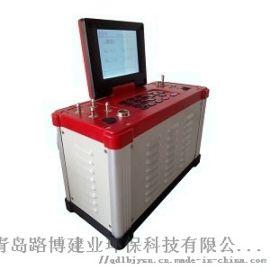 LB-62系列综合烟气分析仪 路博