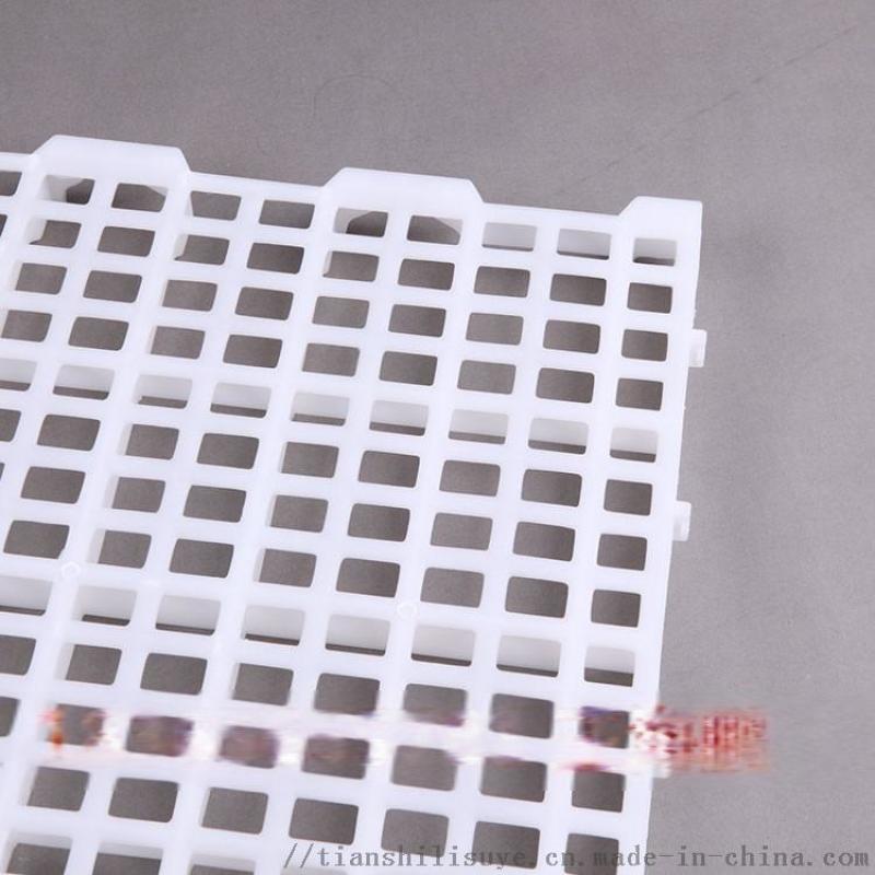 种鸡漏粪板 种鸡塑料漏粪板 大种鸡场塑料漏粪板