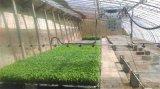 喷水施肥遥控小型温室大棚喷灌机水车喷灌设备
