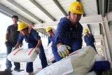 齐鲁石化产聚乙烯原材料2480