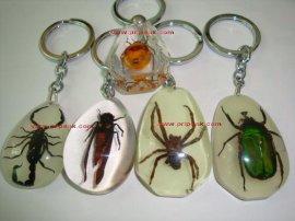 昆虫钥匙扣(PR028)