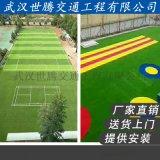 武汉人造草皮草坪运动场体育场草地厂家