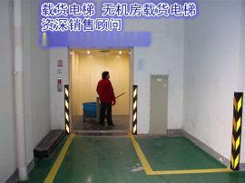 厂家直销浙江省杭州市上城区载货电梯大吨位载货电梯无机房载货电梯