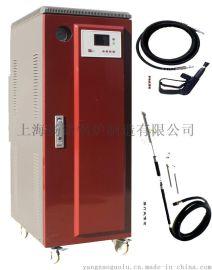 管道除冰 解冻用9KW电蒸汽清洗机 高温高压蒸汽清洗机