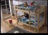 四川实木公寓床,学生高低床,实木上下床