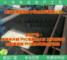 渗疏水板片材 渗排水片材2米幅宽 山东万德富