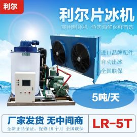 利尔5吨商用片冰机 大型食品厂水产店降温保鲜片冰制冰机设备